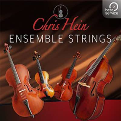 chris_hein_ensemble_strings