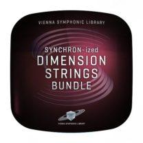 SYNCHRON-ized_Dimension_Strings Bundle_showroomaudio